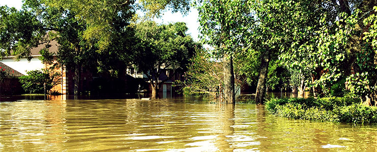 flood waters in a residential area